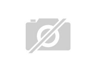 motorisiertes behinderten dreirad welches f r personen. Black Bedroom Furniture Sets. Home Design Ideas